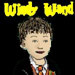 Türk Oyunu Windy Wand